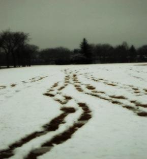 snowtracksweba